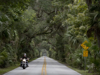 Florida roads under the tropical shade bushes (trees).